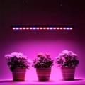 Светильники для растений для мяса